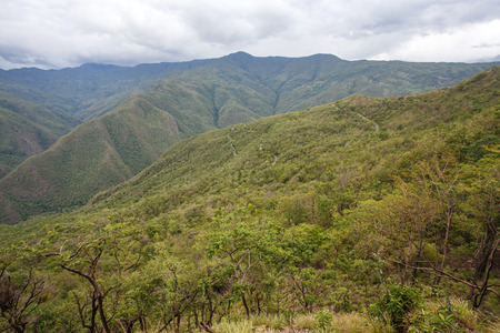 Forest Scenery in the outskirts of Kalay in the Mountains of Chin State, Myanmar (Burma)
