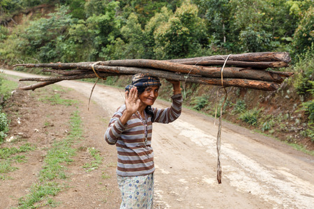 gatherer: FALAM, MYANMAR - JUNE 17 2015: Local woman carries wood on her head in the recently opened to foreigners area of Chin State - western Myanmar (Burma)