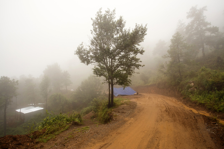 leading: Misty Road Leading Through Chin State Mountains, Myanmar
