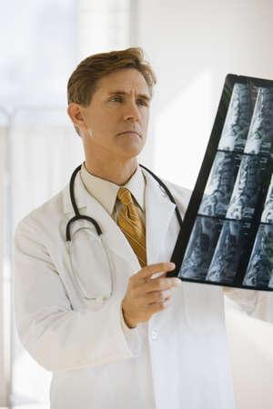 reviewing: Doctor examining xrays Stock Photo