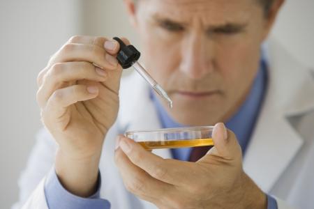 labratory: Scientist with a petri dish