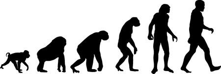 Evolution Vettoriali