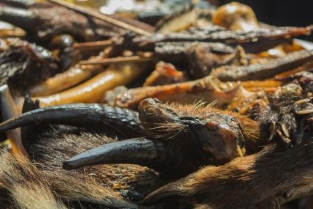 カモシカの頭煮て油を蒸留するには