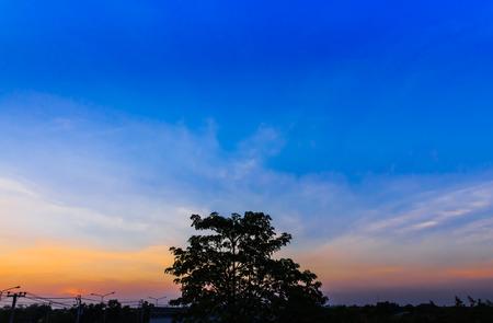 夕焼け空と雲、夕方の木のシルエット