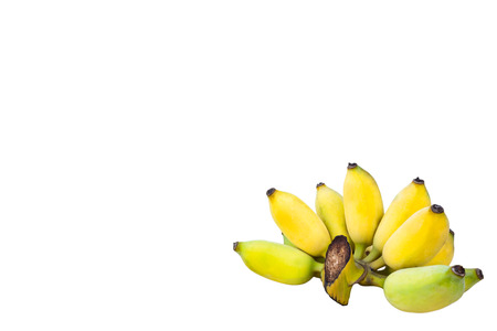 白い背景で隔離栽培バナナ果実 写真素材