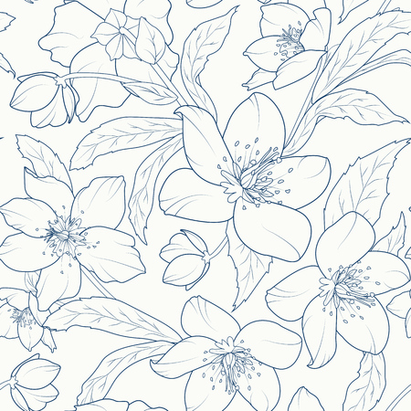 Blooming hellebore flowers seamless pattern. Christmas rose. Lenten rose. Winter rose. Helleborus niger. Detailed sketch drawing. Dark blue on white background. Ilustracja