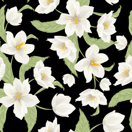 Christmas rose hellebore flowers seamless pattern on black background. Watercolor style drawing. Vector design illustration. Winter rose. Lenten rose. Helleborus niger.