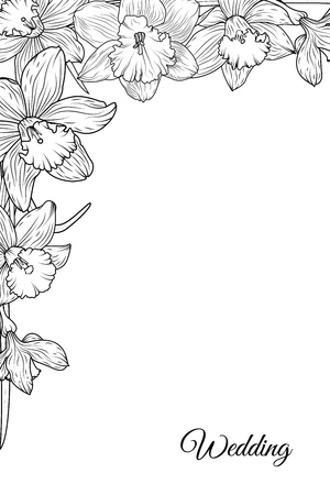 Narcissus daffodil blooming flowers corner border frame template. Black and white floral vector design illustration. Detailed outline sketch. Wedding marriage theme. Ilustração