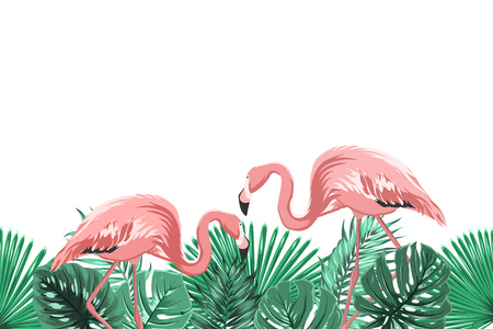 Tropical greenery rain forest leaves and exotic pink flamingo birds couple in natural habitat. Horizontal landscape footer border design element. Vector design illustration.