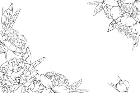 Peony rose garden flowers black and white detailed outline drawing. Corner border frame decoration element template. Horizontal landscape layout. Vector design illustration.