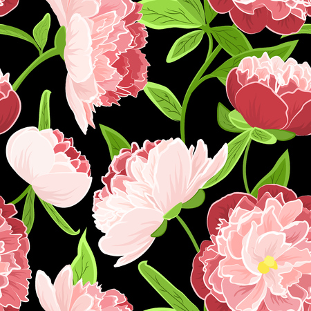 Peony rose flowers detailed vector drawing. Bright fresh spring seamless floral pattern on black background. Red pink green colors. Vector design illustration. Stock Photo