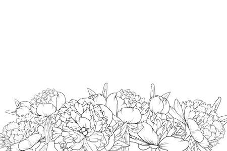 Peony spring summer flowers shrub bloom blossom black and white detailed outline sketch drawing. Bottom border frame horizontal landscape layout. Vector design illustration. Vintage style.