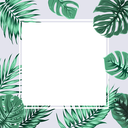 Exotic tropical rectangle square border frame element decorated with green jungle rain forest tree branch leaves on grey background. White placeholder in the middle. Vector design illustration.