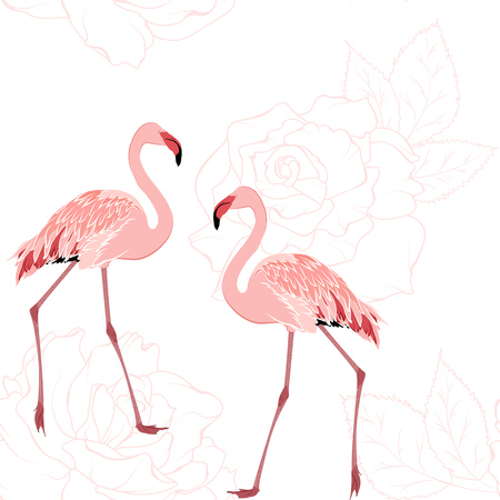 Exotic pink flamingo birds. Rose flowers bloom blossom outline background. Seamless pattern texture. Tender romantic couple love wedding theme. Vector design illustration.