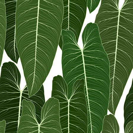 Long big tropical leaves with sharp tips overlay repeat seamless pattern texture. Shades of green on white background. Botanical garden rainforest. Feather shape. Vector design illustration.