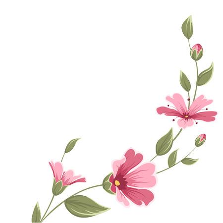 Baby breath gypsophila flower branch with blooming flowers, bud, stem, green leaves.