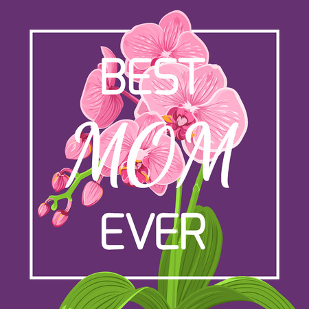 Mothers day floral spring greeting card template. Exotic pink purple orchid phalaenopsis flower plant in square rectangular border frame on violet background. Best mom ever headline text placeholder.