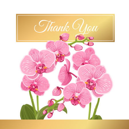 Bright pink purple exotic orchid phalaenopsis flower plants bouquet. Isolated white background. Shiny golden gradient text placeholder.