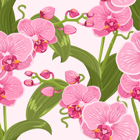 Pink purple tender orchid phalaenopsis floral seamless pattern. Exotic spring summer flowers bloom blossom foliage garland bouquet on white background. Vector design illustration. Illustration