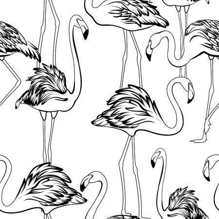 Exotic flamingos flamboyance group gathering seamless pattern. Black white outline sketch drawing. Wading bird species feather realistic detailed vector design illustration. Standing moving posture. Vettoriali