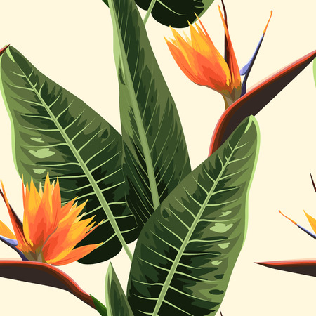 Strelitzia bird of paradise exotic tropical bright orange flowers and green leaves. Realistic detailed watercolor style floral foliage illustration on light beige background. Stylish luxury plant. Vettoriali