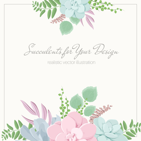Echeveria stone rose succulent flowers fern greenery mix bouquet composition. Floral design garland foliage in pastel colors. Top bottom decoration design elements. Elegant tender flowering plants.