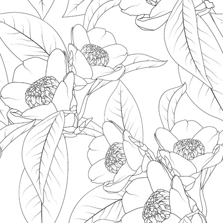 Camellia flowers bouquet with leaves line design drawing. Floral natural seamless pattern texture. Flowering plant head petals bloom blossom. Black and white vector design illustration.