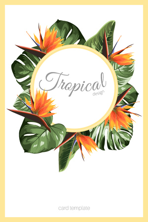 Exotic tropical greenery decoration round circle wreath design element. Monstera philodendron jungle palm rainforest tree leaves. Bright orange strelitzia bird of paradise flower. Card template.