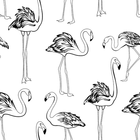 Flamingos black and white seamless pattern. Exotic wading birds in different postures. Detailed outline ink drawing. Feather, neck, beak, body, legs. Vector design illustration.