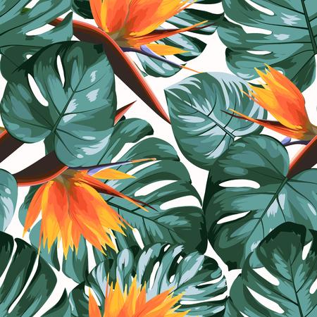 Vegetación tropical philodendron monstera jungle rainforest árbol hojas. Strelitzia naranja brillante ave del paraíso flores. Fondo blanco exótico de patrones sin fisuras. Ilustración de diseño vectorial.