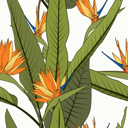 Bright cheerful tropical seamless pattern. Exotic orange strelitzia bird of paradise flowers long tall green leaves on white background. Holiday resort greenery. Botanical vector design illustration.