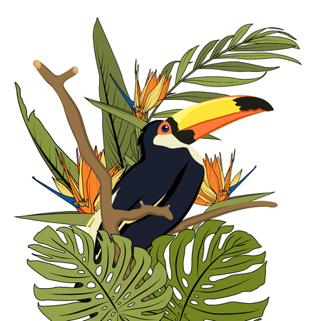 Toucan black bird with yellow beak in natural tropic habitat on tree branch. Exotic tropical forest greenery jungle palm monstera green leaves. Orange bird of paradise flower. Isolated design element. Ilustrace