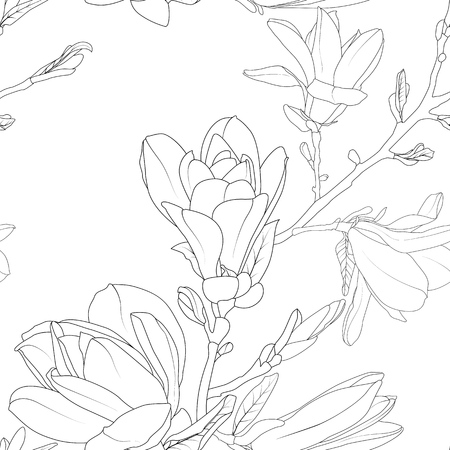 Magnolia flowers bouquet detailed floral sketch line pattern. Hand drawn nature painting. Black and white background. Vector illustration. Ilustrace