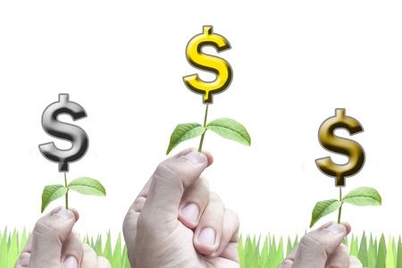 pick money: 3 Manos tomar planta de dinero en concepto de Competencia blanco