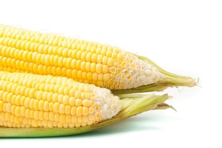 Fresh Raw corn photo
