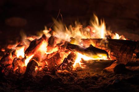 carbone: le braci di un fuoco da campo nel primo piano della foresta