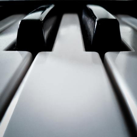 ピアノキーの視点正面図