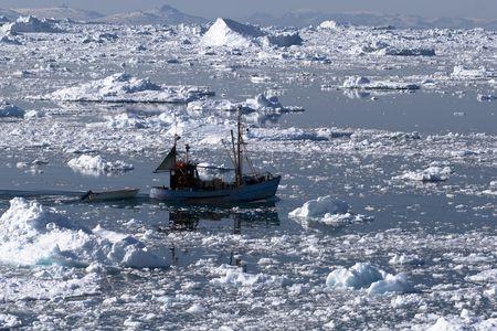 fischerboot: Fischerboot gehen durch den eisigen Gew�ssern der Ilulissat, Gr�nland