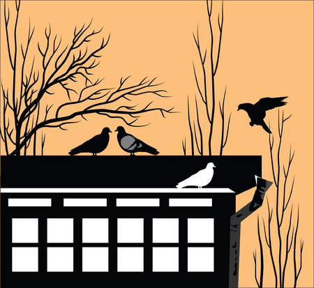 pigeons: Roof of the house with sitting pigeons Illustration