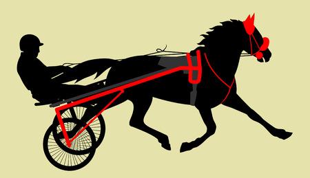 cavallo carro che trasporta un cavaliere