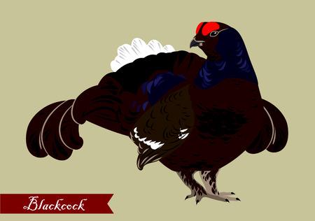 gamebird: forest grouse