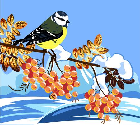 nude outdoors: titmouse sitting on a branch of rowan Illustration