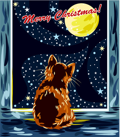 windowsill: Cat on the windowsill looking at the moon and snow