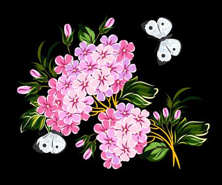 single flower: Blossoming branch of a bird cherry