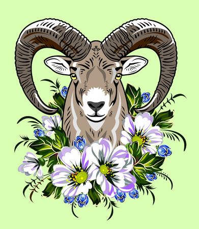 lowers: rams head in the flowers Illustration