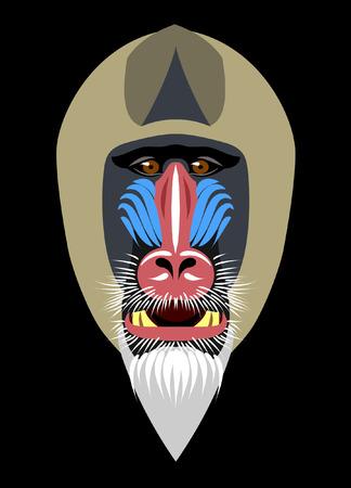 nose close up: muzzle of monkey