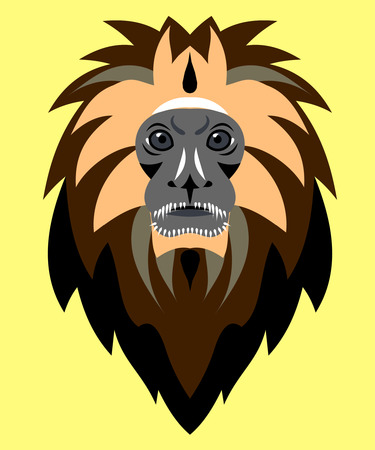 nose close up: muzzle of a small monkey marmoset Illustration