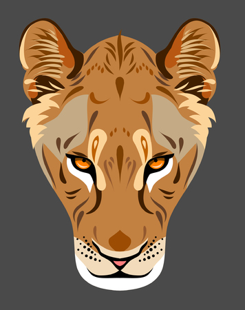lioness: The muzzle of a lioness Illustration