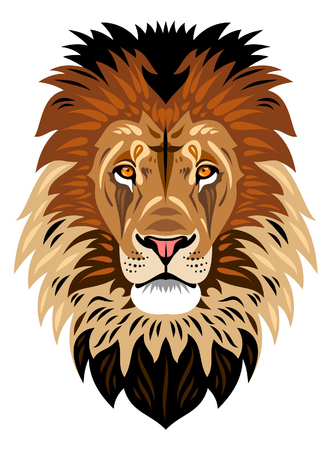 LEONES: El hocico de un león