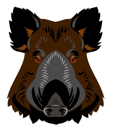 muzzle: Muzzle boar